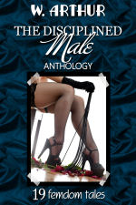 The Disciplined Male Anthology