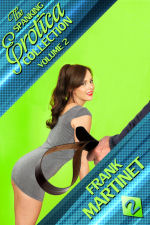 The Spanking Erotica Collection - Volume 2